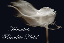 Fumaiolo Paradise